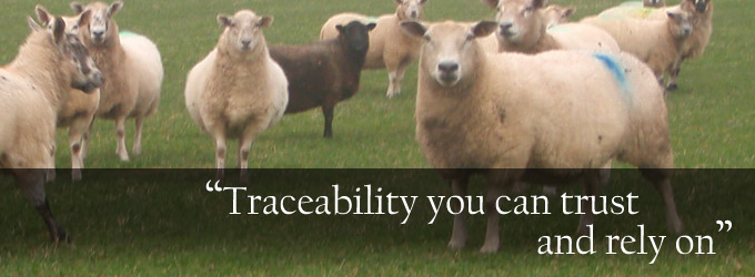Traceability you can trust